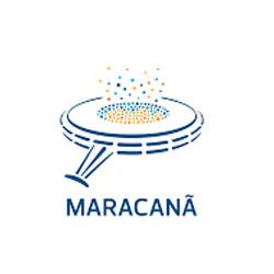 maracana fussballmuseum springe